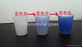 Color  change glass mug