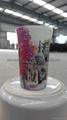 color coating glass mug , promotional glass mug 6