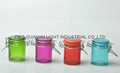 colored mini glass jar with clip top