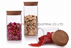 high borosilicate glass tube with cork,cylinder glass jar