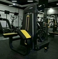 Dezhou Pin Loaded Precor Lateral Raise Gym Fitness Equipment