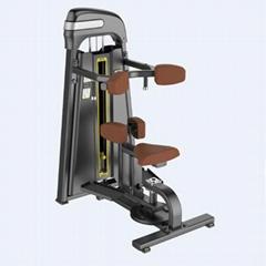 Wholesale Professional Precor Rotary Torso Gym Fitness Equipment