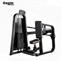 Factory Body Stretching Machine Precor Gym Equipment for Seated DIP