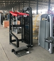 Commercial Gym Fitness Equipment Technogym Lower Back Exercise Machine