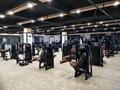 Body Building Technogym Exercise Machine Seated Leg Curl Strength Equipment