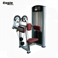 Factory Directly Pin Loaded Commercial Lateral Raise Life Fitness Machine Gym Eq