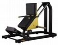 Hammer Strength Gym Equipment Plate