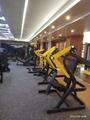 Body Building Professional Gym Equipment Linear Leg Press