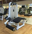 Wholesale Exercise Machine Technogym Horizontal Leg Curl Fitness Equipment pic