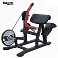 Wholesale Gym Equipment Life Fitness Bodybuilding Biceps Curl/ Arm Curl with Goo