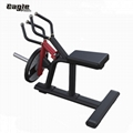Bodybuilding Plate Loaded Hammer