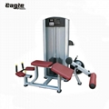 2019 Best Quality Life Fitness Commercial Fitness Gym Equipment for Prone Leg Cu