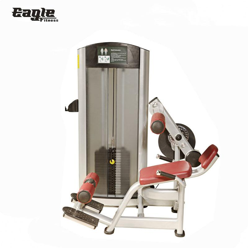 Strength Machines Life Fitness Dual Function Sports Equipment for Back Extension