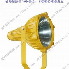 BTC8210防爆投光燈