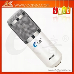 popular microphone for recording and