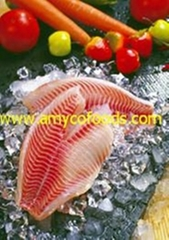 Tilapia Fillet high quality from tilapia fillet expert in China