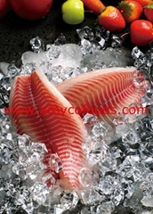 Healthier Tilapia Fillet from good