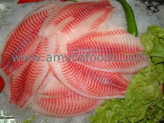 Tilapia Fillet high quality cage farmed fish