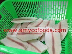 Tilapia Fillet from good tilapia fillet factory in China