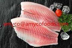 High Quality Tilapia Fillet from good factory in China