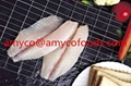 Tilapia Fillet high quality cage farmed fish 4