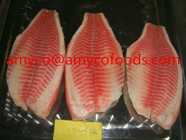 Tilapia Fillet high quality cage farmed fish 5