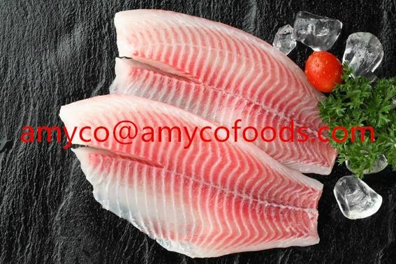 Tilapia Fillet high quality cage farmed fish 2