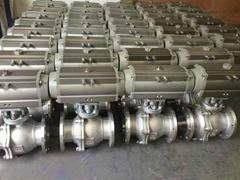 Stainless Steel Pneumati