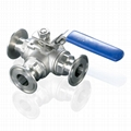 Stainless Steel Tri Clamp Sanitary PTFE