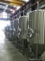 Craft Beer Brewing Fermentation Tank