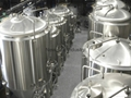 Stainless Steel Complete Craft Beer