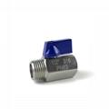 Stainless Steel (316) Mini Ball Val MXF