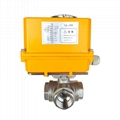 Electrically Motor-Driven 316SS Actuated