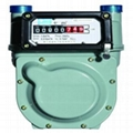 Pulse Diaphragm Gas Meters