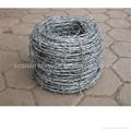 Barbed wire, Razor wire