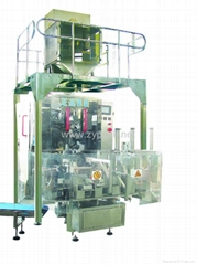 JUJUBE|BEAN|SEED|YEAST VACUUM PACKAGING MACHINE