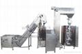 SAUERKRAUT/PICKLE/BEAN SRPOUT PACKAGING MACHINE 1