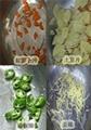 多功能經濟型切丁切菜機 2