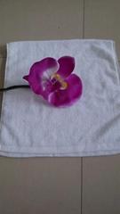 礼品压缩毛巾