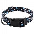 2.0cm polyester sublimation dog collars and leashes 4