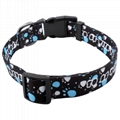 2.0cm polyester sublimation dog collars and leashes 5