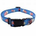 Sell Heat-Transfer Printed Personalized Wholesale Dog Collar 3