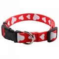 Custom made cat collar 2