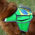 Guangzhou QQPETS factory new design pet harness 2