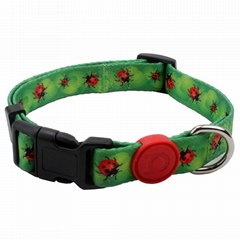 New Style Eco-Friendly Design Custom Personalized Dog Collars