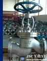 JSC BS 1873 Cast Steel Globe Valve 1