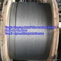 ASTM A 475 ASTM A 363 Ga  anized Steel