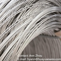 High-Carbon Ga  anized Steel Wire