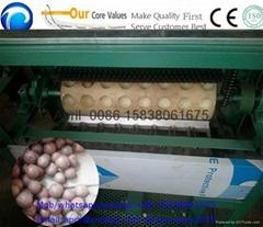 macadamia nut opening machine