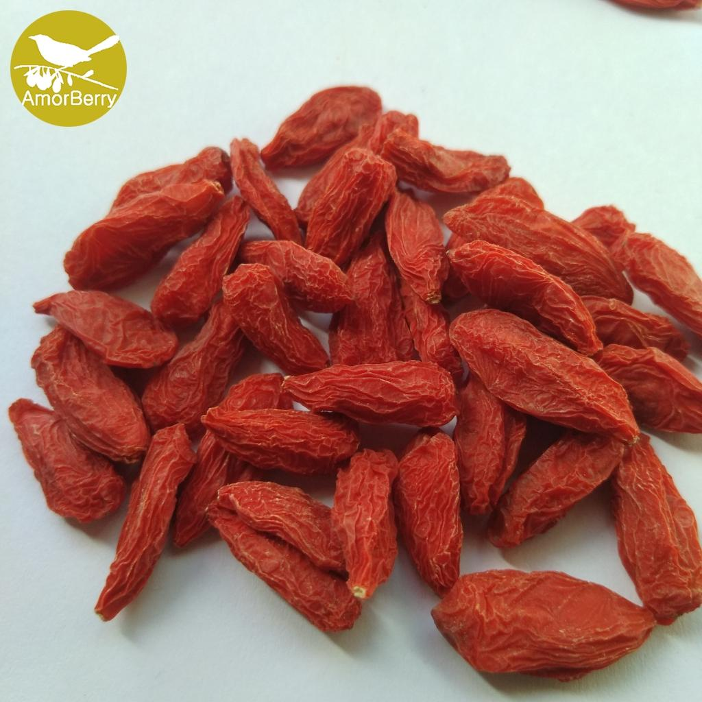 Dried fruit good for health factory supply best quality dried goji berry ,dried  1